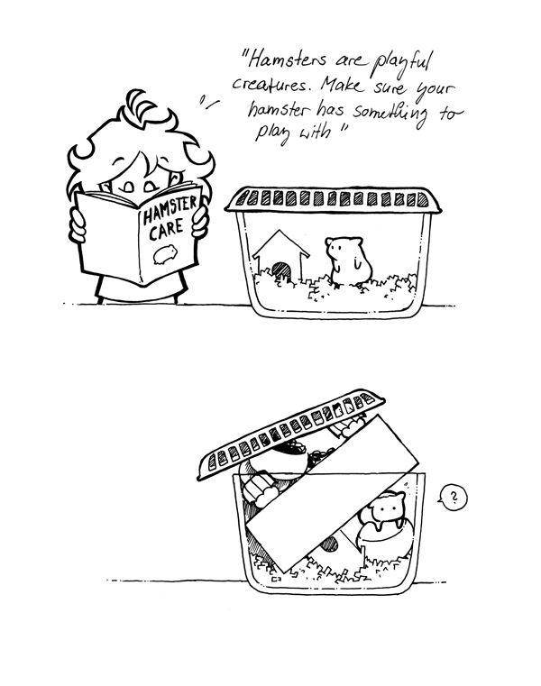 hamster care